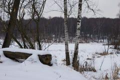 Banc et arbres de parc couverts par la chute de neige importante Un bon nombre de neige Photographie stock