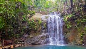 Banc et cascade en parc national de forêt tropicale de Colo-je-Suva, réserve naturelle près de Suva, île de Viti Levu, Fidji, la  images libres de droits