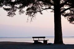 Banc et grand arbre à la silhouette de plage images libres de droits