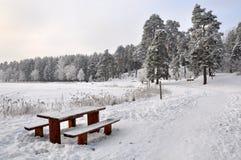 Banc et table dans la neige Photo stock