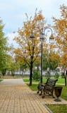 Banc, lampe, arbre en parc en automne après une pluie Photo libre de droits