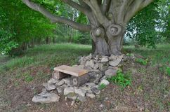 Banc pour le repos sous le vieux chêne, Bohême du sud Photographie stock libre de droits