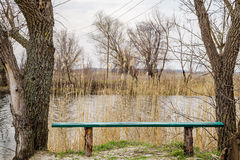 Banc près de la rivière Photographie stock
