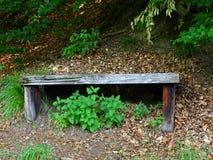 Banc reculé dans les bois photographie stock