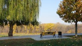 Banc sur l'allée de parc en automne photographie stock