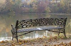 Banc sur le rivage de lac, cru Images stock
