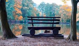 Banc sur une nature d'automne photos libres de droits