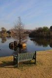 Banc vert à côté d'un étang urbain Photos libres de droits