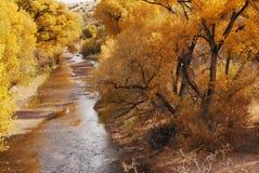 Banca di fiume nel tempo di autunno Fotografie Stock