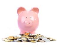 Banca e soldi del maiale Fotografie Stock