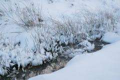 Banca erbosa innevata tramite una torrente montano in Galles immagini stock