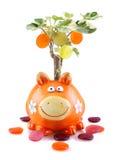 Banca piggy arancione con l'albero dei soldi Immagini Stock