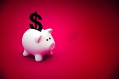 Banca Piggy dei soldi Fotografie Stock