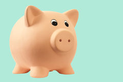 Banca piggy del maiale Immagini Stock