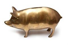 Banca piggy dell'oro Immagine Stock