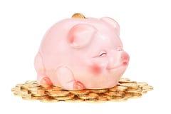 Banca piggy dentellare sul mucchio delle monete. Immagine Stock
