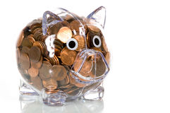 Banca piggy di plastica libera in pieno dei penny Immagini Stock Libere da Diritti