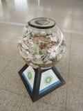 Banca piggy di vetro Immagine Stock