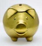 Banca piggy dorata Immagini Stock