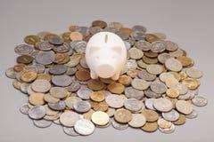 Banca Piggy sulle monete Fotografie Stock