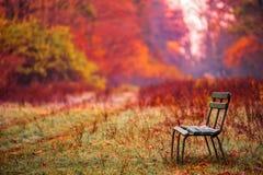 Banch в парке осени Стоковая Фотография