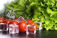 Banch красных томатов вишни, зеленого салата и кубов льда на черноте Стоковое Изображение RF