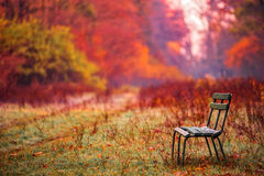 Banch in the autumn park Stock Photography
