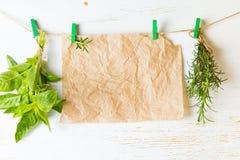 Banch da manjericão dos alecrins e da suspensão de papel no fundo branco Fotografia de Stock Royalty Free