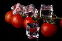Banch des tomates-cerises et des glaçons rouges sur la table humide noire Se photos libres de droits