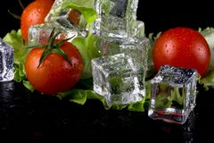 Banch of red cherry tomatos, green salad and ice cubes on black Royalty Free Stock Image