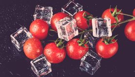 Banch of red cherry tomatos and ice cubes on black wet table. Se Royalty Free Stock Photo
