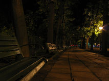 A banch to night. Park bench stock photos