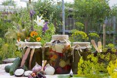 Banche con le verdure marinate - cetrioli, pomodori, zucchini, a Immagine Stock