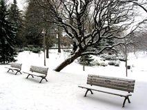 Banchi di inverno Immagini Stock