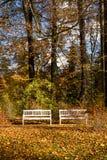Banchi di legno nella sosta Fotografia Stock Libera da Diritti