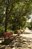 Banchi rossi in un parco Fotografie Stock Libere da Diritti