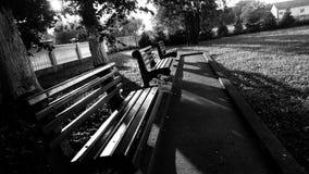 Banchi vuoti nel Central Park fotografia stock libera da diritti