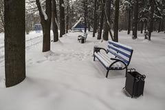 Banchi vuoti nel parco di inverno Fotografia Stock Libera da Diritti