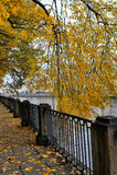 Banchina di autunno fotografie stock libere da diritti