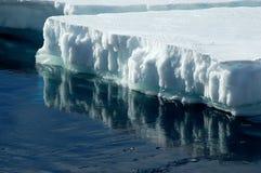 Banchisa galleggiante di ghiaccio antartica Immagine Stock