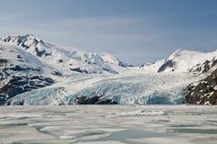 Banchise galleggianti del ghiacciaio e di ghiaccio di Portage fotografia stock libera da diritti