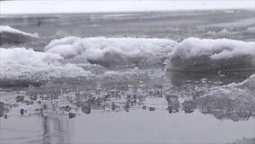 Banchise sull'acqua stock footage