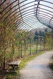 Banco, árboles y camino curvado largo en el jardín Foto de archivo