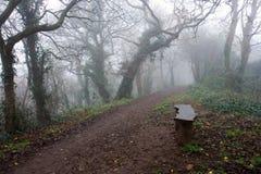 Banco al lato di un percorso nebbioso Fotografia Stock