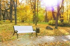 Banco bianco in un parco in autunno Fotografia Stock Libera da Diritti