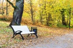 Banco bianco in un parco in autunno Fotografie Stock