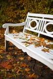 Banco blanco en paisaje del otoño Fotos de archivo