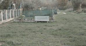 Banco branco isolado no jardim fotografia de stock royalty free