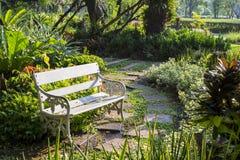 Banco branco no jardim Fotografia de Stock