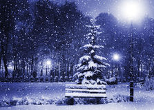 Banco, christmastree y linterna Fotos de archivo